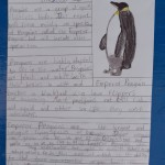 A Penguin Report